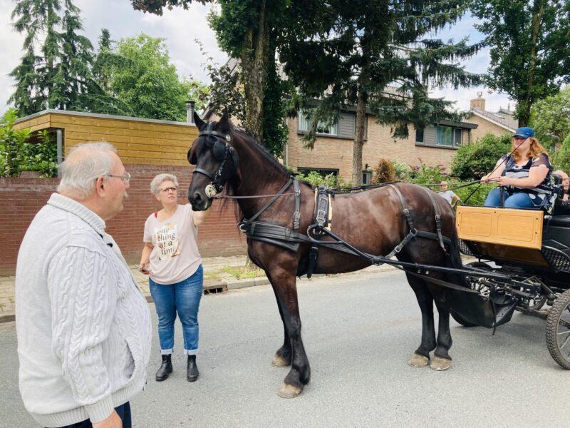 paard en wagen 4